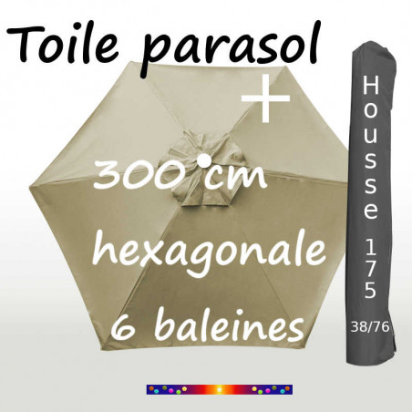 Pack : Toiles 300/6 Soie Grege + Housse 175/38x76