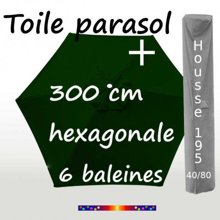 Pack : Toile 300/6 Vert Pinède + Housse 195x40/80