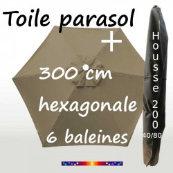 Pack : Toile 300/6 Taupe + Housse 200x40/80