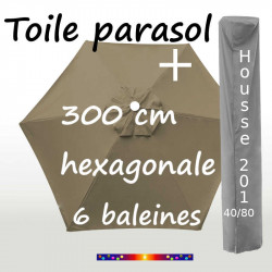 Pack : Toile 300/6 Taupe + Housse 201x40/80